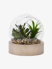 Plante lumineuse sur base